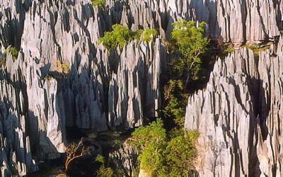 Co zobaczyć na Madagaskarze?