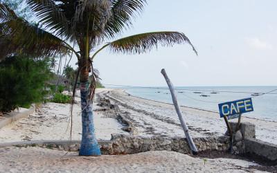 Selous & Zanzibar